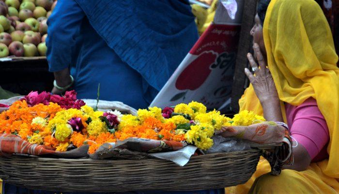 flower-2324290_1920